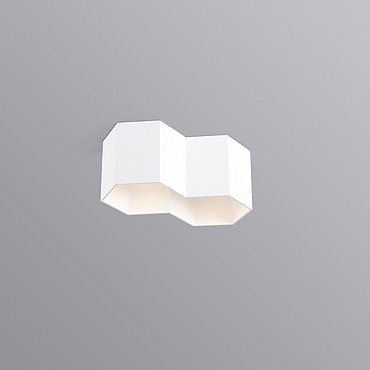 HEXO 2.0 PAR16 2xmax35W GU10 100-240V ceiling surface, white