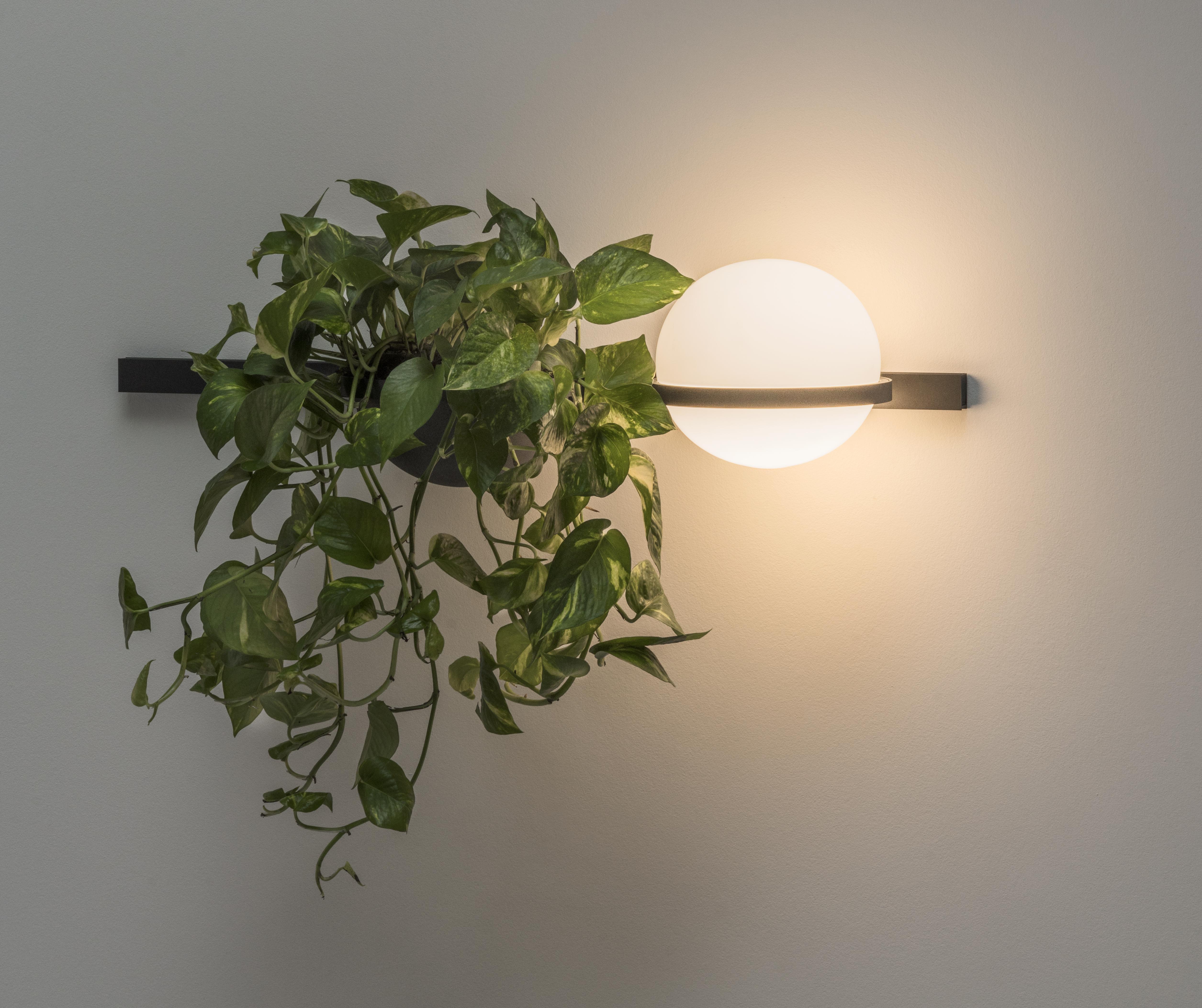 Seinavalgusti Palma LED 4,6W 576.51lm 2700K CRI>90, 1-10V hämardatav, puhutud opaalklaas / grafiithall alumiinium